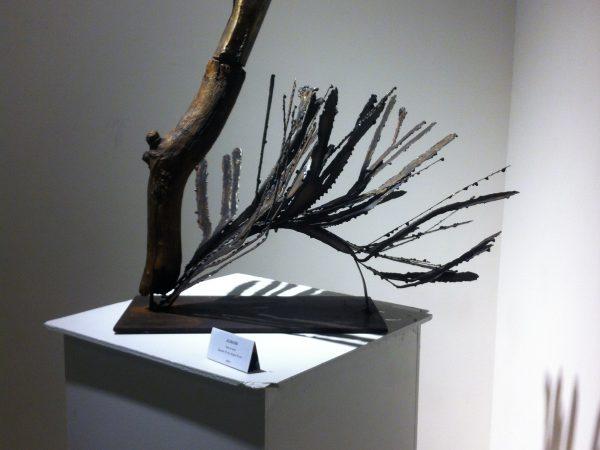 DANNIOU-Valerie-Autruche-Sculpture acier-hauteur 57cm-longueur 60cm